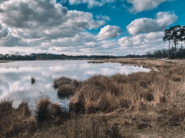 Dutch Outdoors Hike