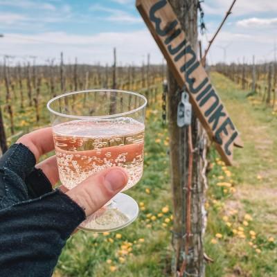 Dutch Outdoors Wijn